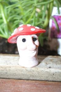 Mushroom number one